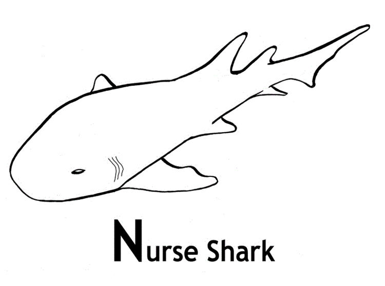 Nurse Shark Coloring Pages