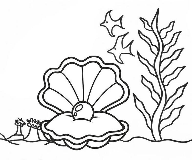 Open Oyster Pearl Undersea Coloring Page