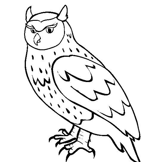 Owl Coloring In Pages