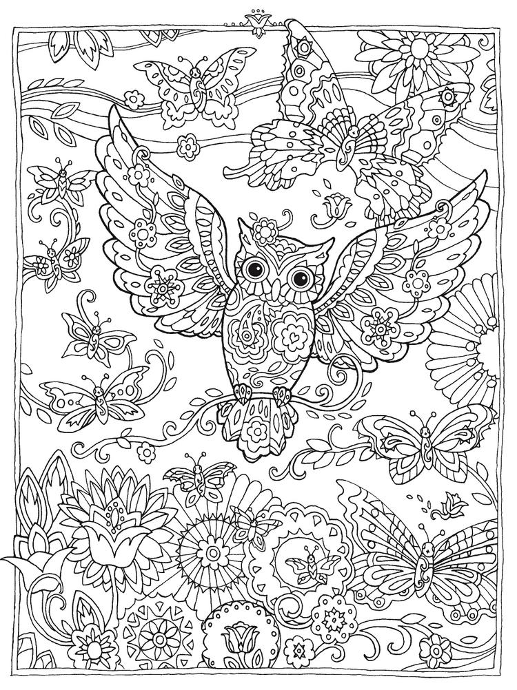 Owl mandala bird coloring sheet