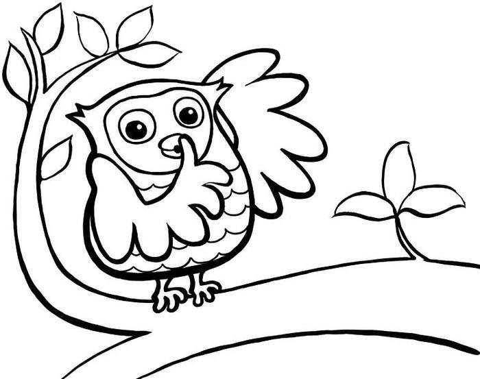 Owlet Coloring Pages