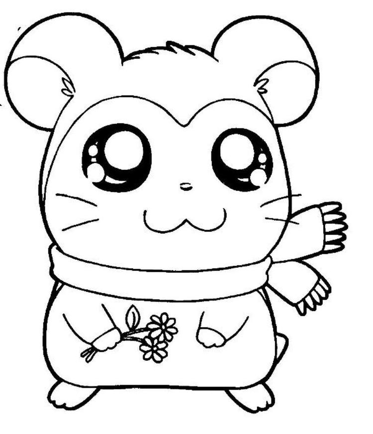 Pashmina Hamtaro Coloring Pages