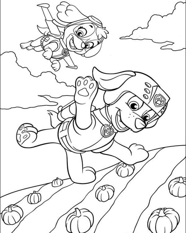 Paw Patrol Coloring Pages Skye And Zuma Flying