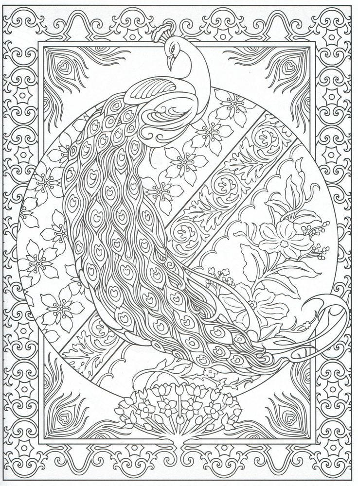 Peacock Coloring Pages Printable For Adults