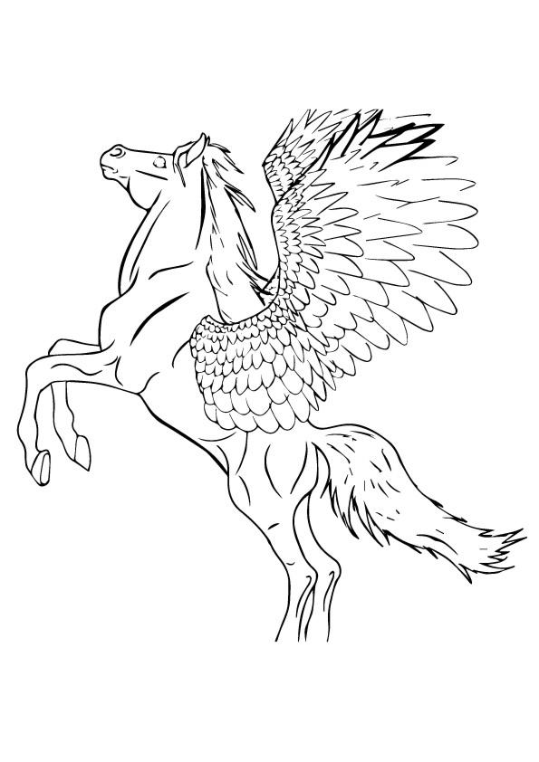 Pegasus Coloring Pages For Boys