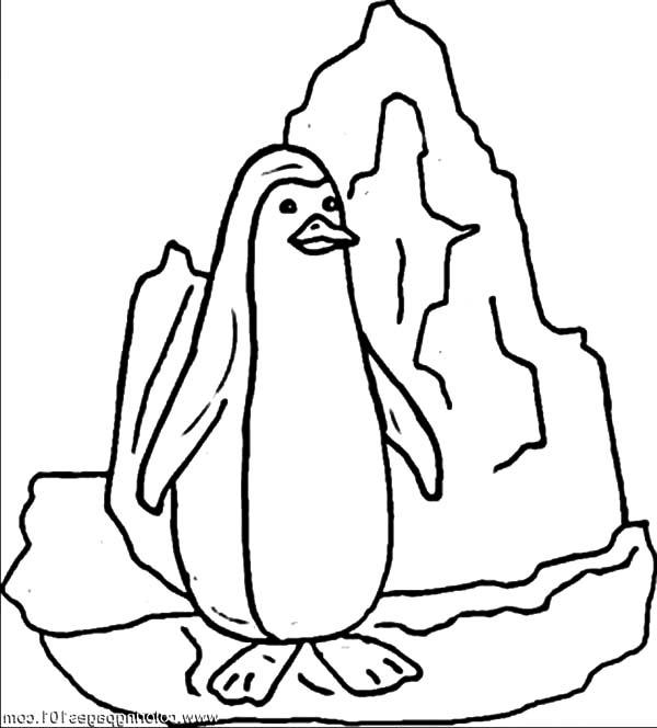 Penguin Standing On Iceberg Coloring Pages