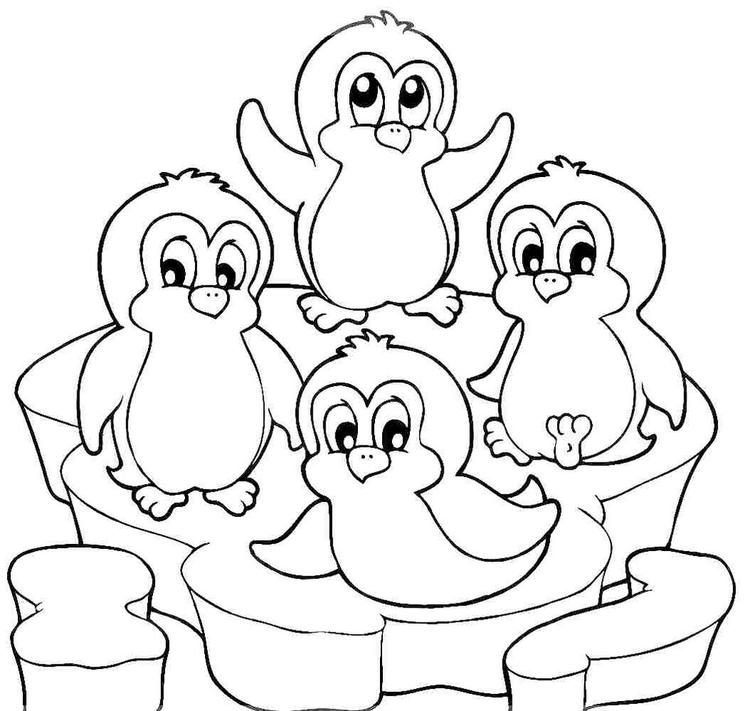 Penguin Winter Animal Coloring Page