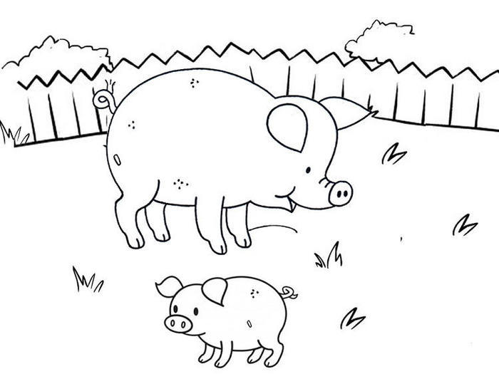 Pig and piglets coloring pages