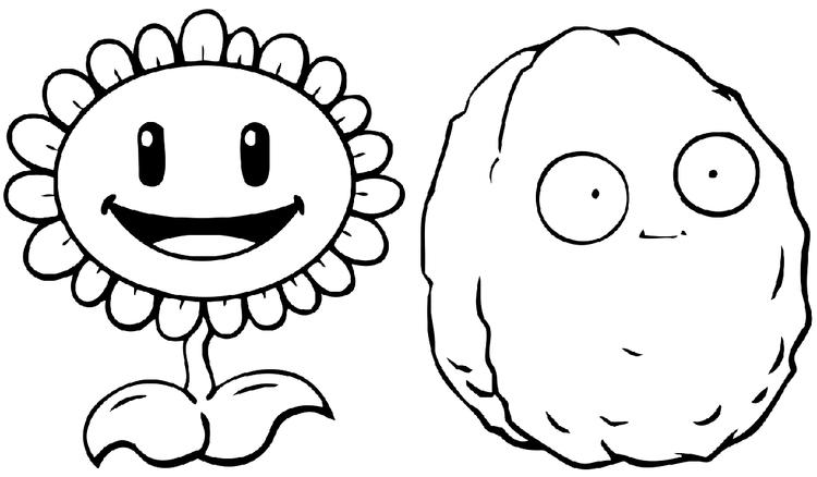 Plants Vs Zombies Coloring Pages Sunflower Wall Nut