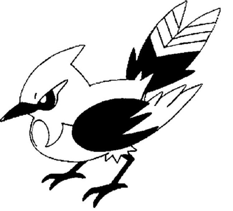 Pokemon Coloring Pages Fletchinder