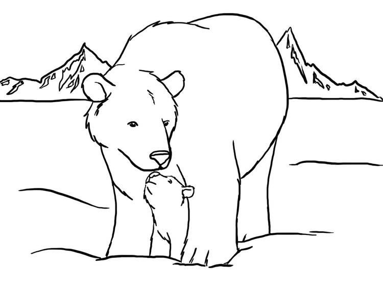 Polar Bear Coloring Pages Mom And Cub