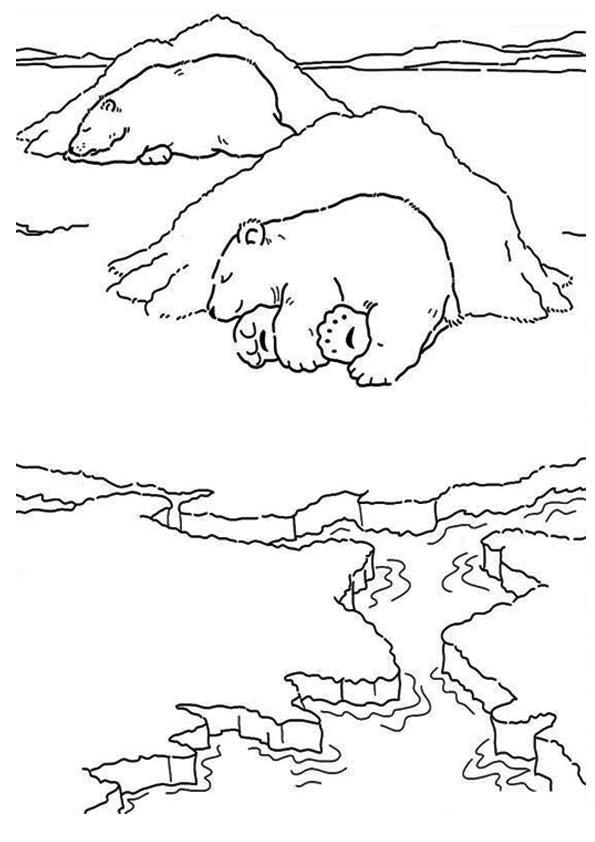 Polar Bear Coloring Pages Sleeping