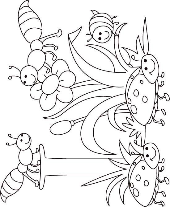 Printable Insect Coloring Pages For Kids