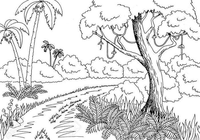 Printable Jungle Coloring Pages