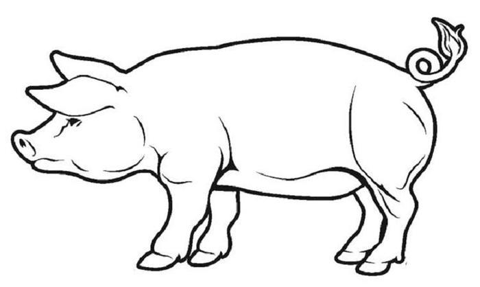 Printable Pig Coloring Pages