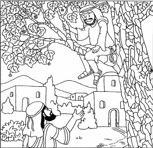 Printable Zacchaeus Coloring Pages 2