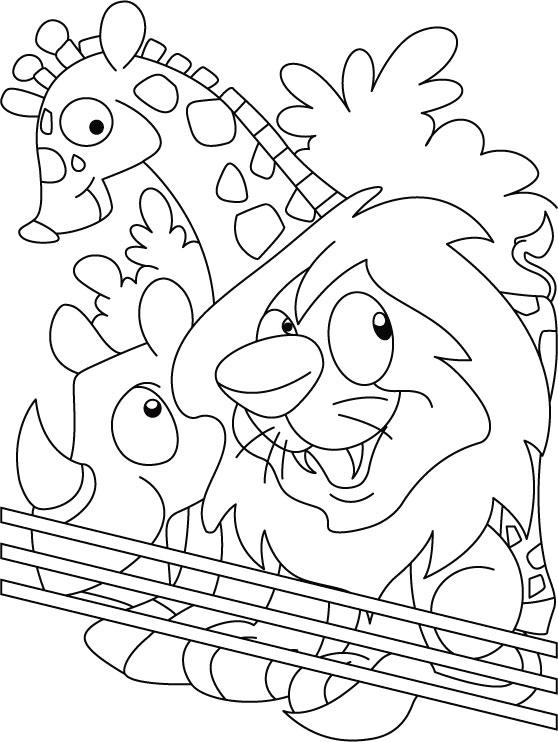 Printable Zoo Coloring Pages For Kids
