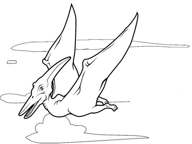 Pterodactyl Coloring Page For Kids