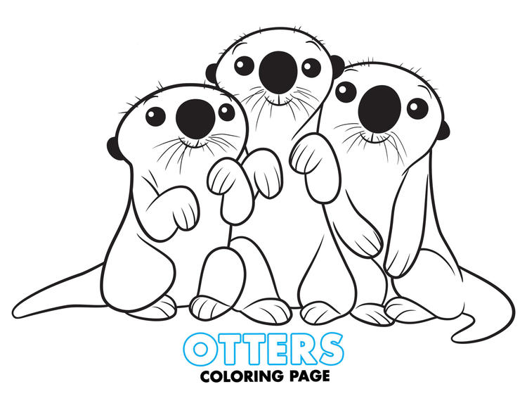 Ptters Finding Dory Coloring Page