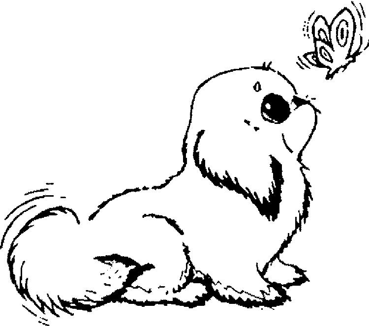 Puppies Coloring Pages And Butterfly