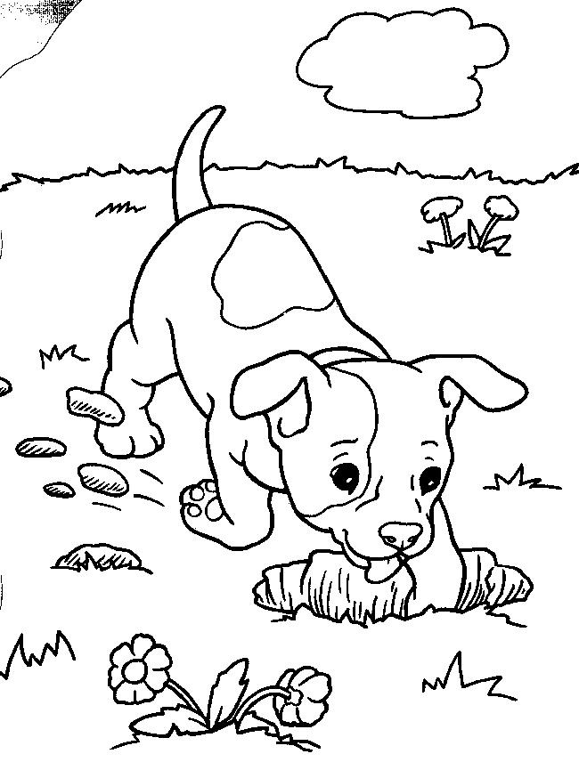 Puppies Coloring Pages Digging In Garden