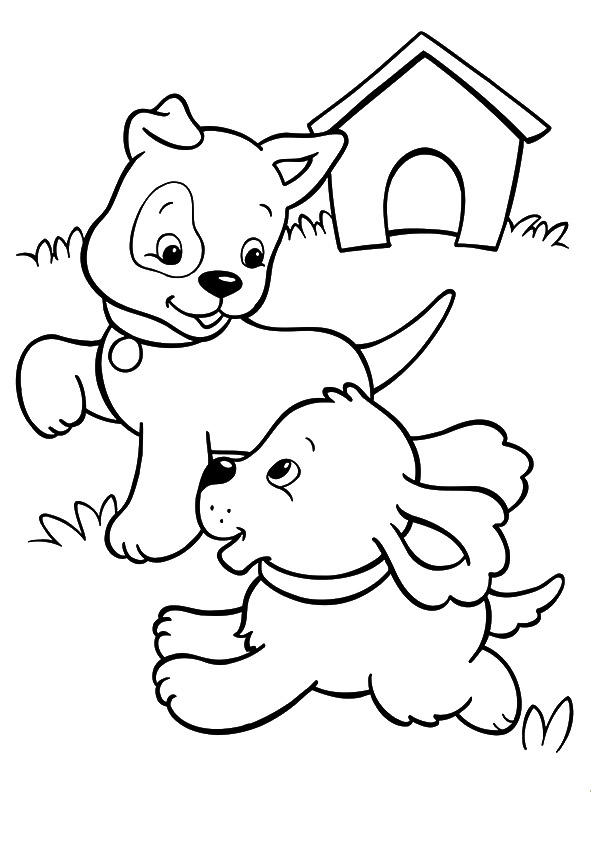 Puppies Coloring Pages Playing In The Grass
