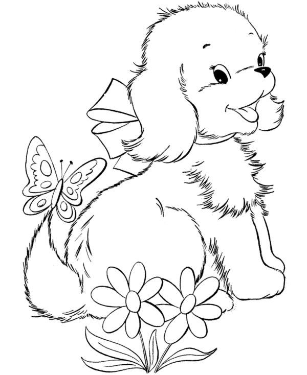 Puppy Coloring Pages Picture