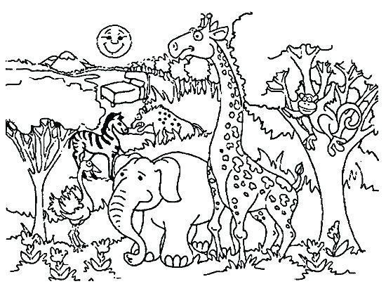 Put Me In A Zoo Coloring Pages