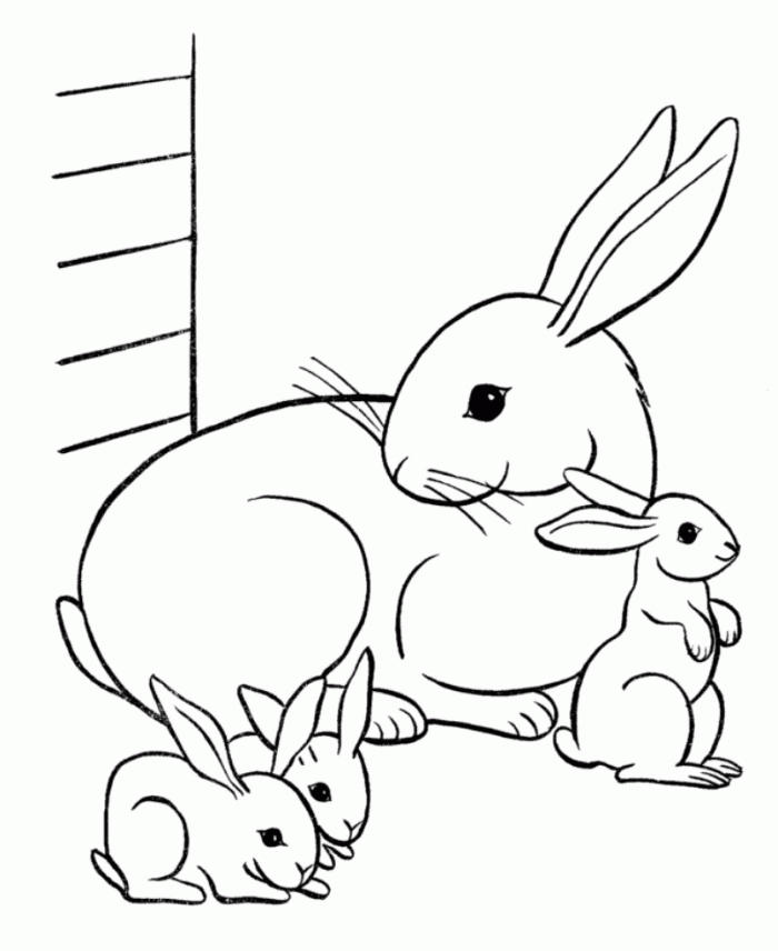 Rabbit Coloring Pages Bunnies And Mom