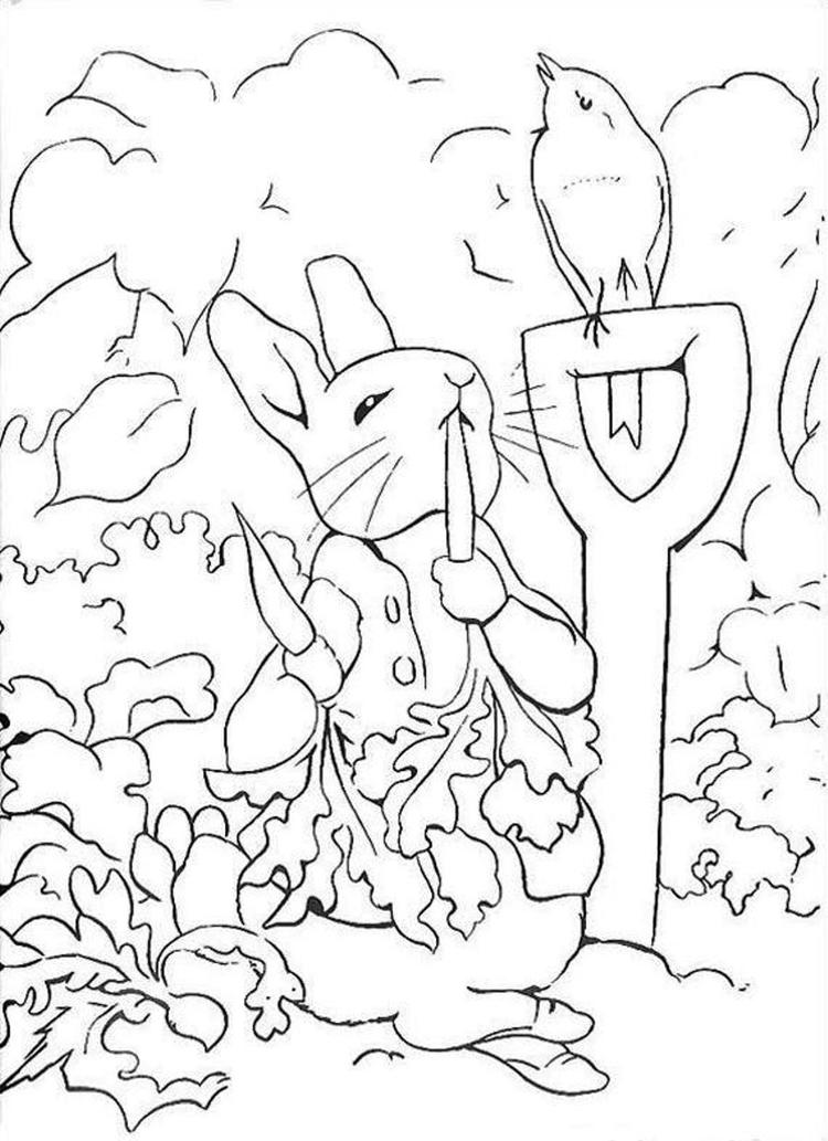 Rabbit Coloring Pages In Vegetable Garden