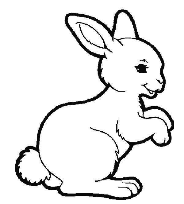 Rabbit Coloring Pages Standing