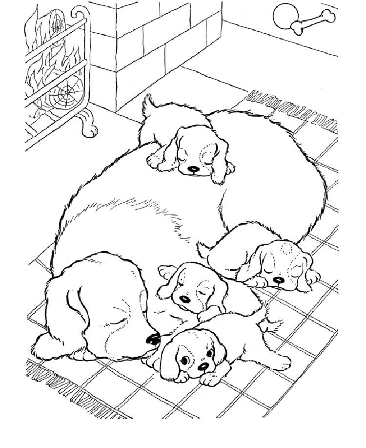 Real Life Dog Coloring Pages