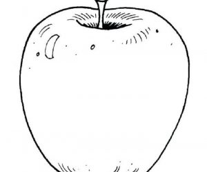 Realistic apple coloring pages