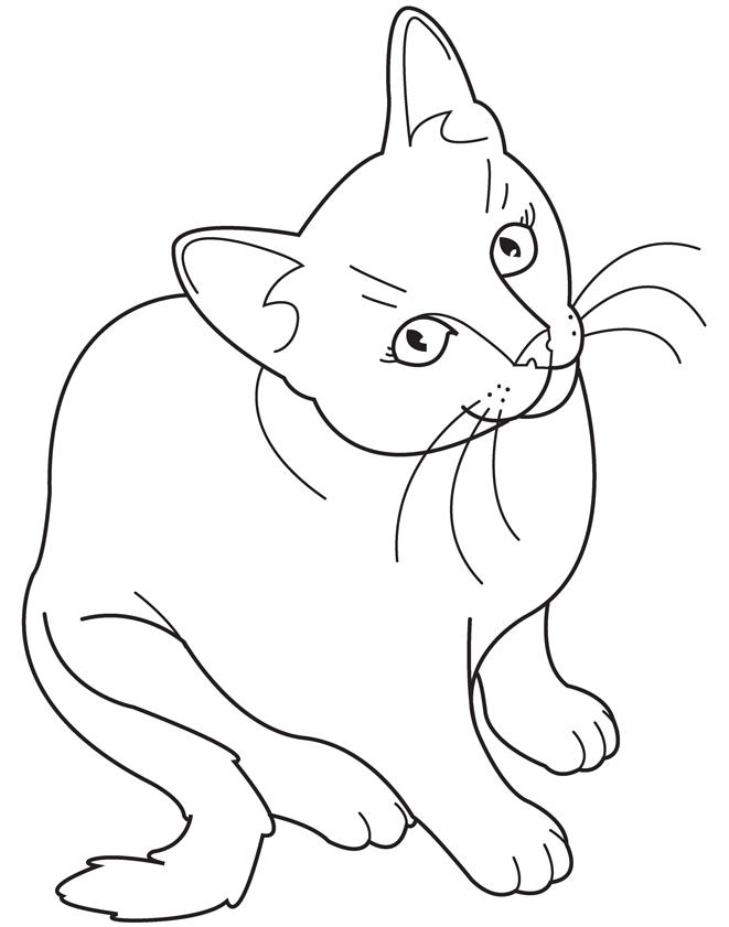Realistic Cat Coloring Pages For Child