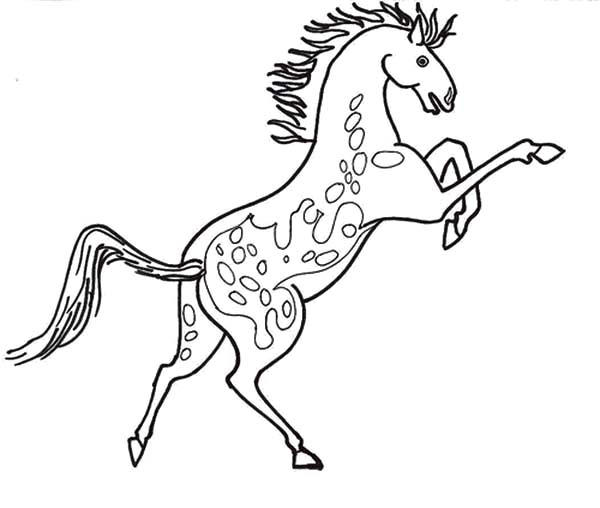 Rearing Appalooshorse Coloring Pages