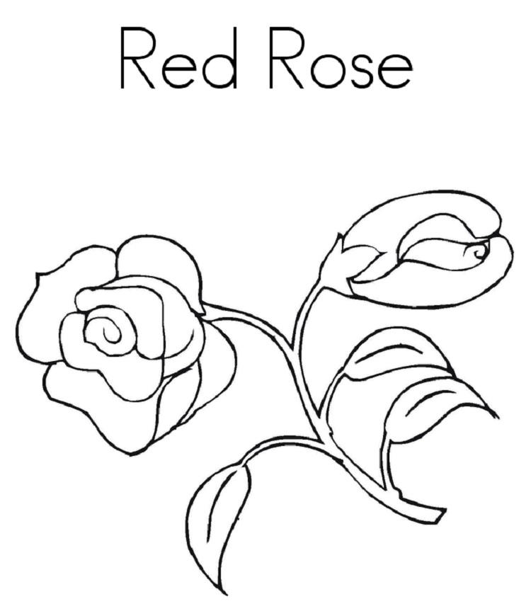 Red Rose Coloring Pages