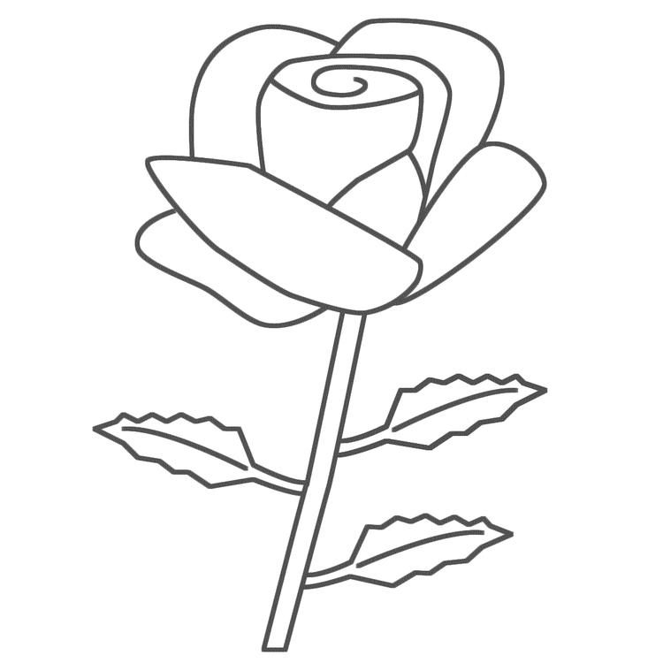 Rose Coloring Pages For Toddlers