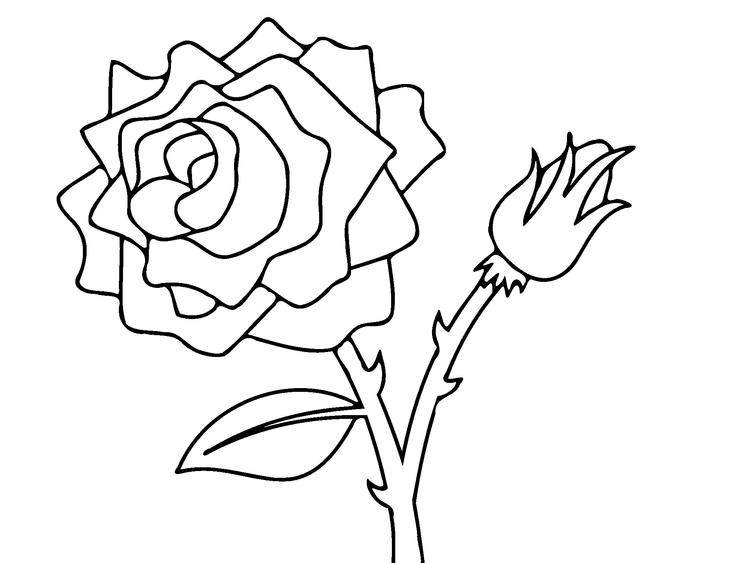 Rose Coloring Pages Free To Print