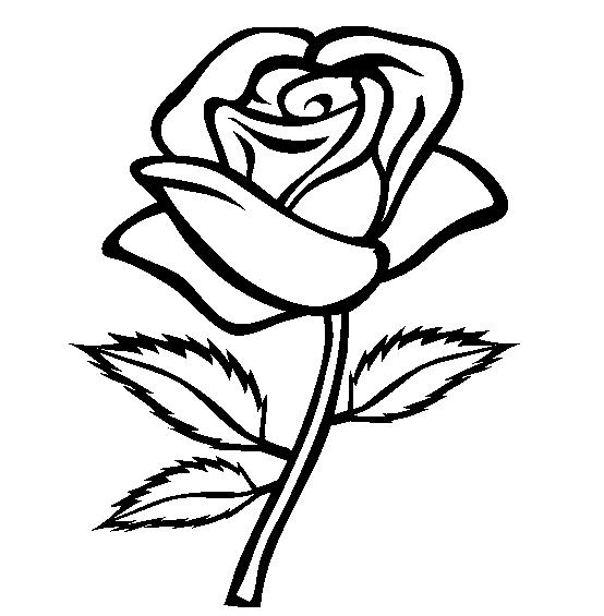 Rose Coloring Pages Printable Flower