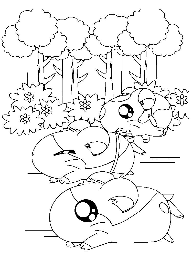 Running Hamtaro Coloring Pages