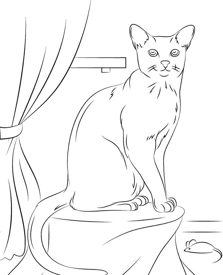 Russian Blue Cat Coloring Pages