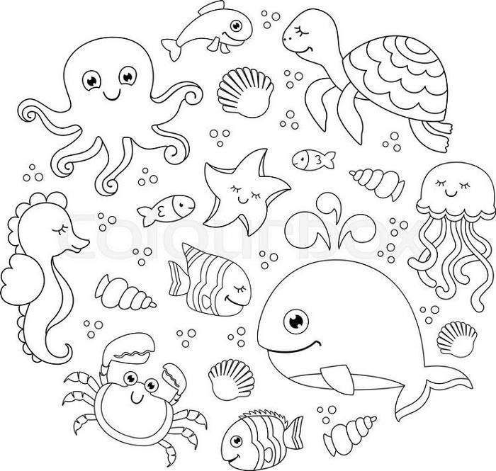 Sea Life Under The Sea Coloring Pages
