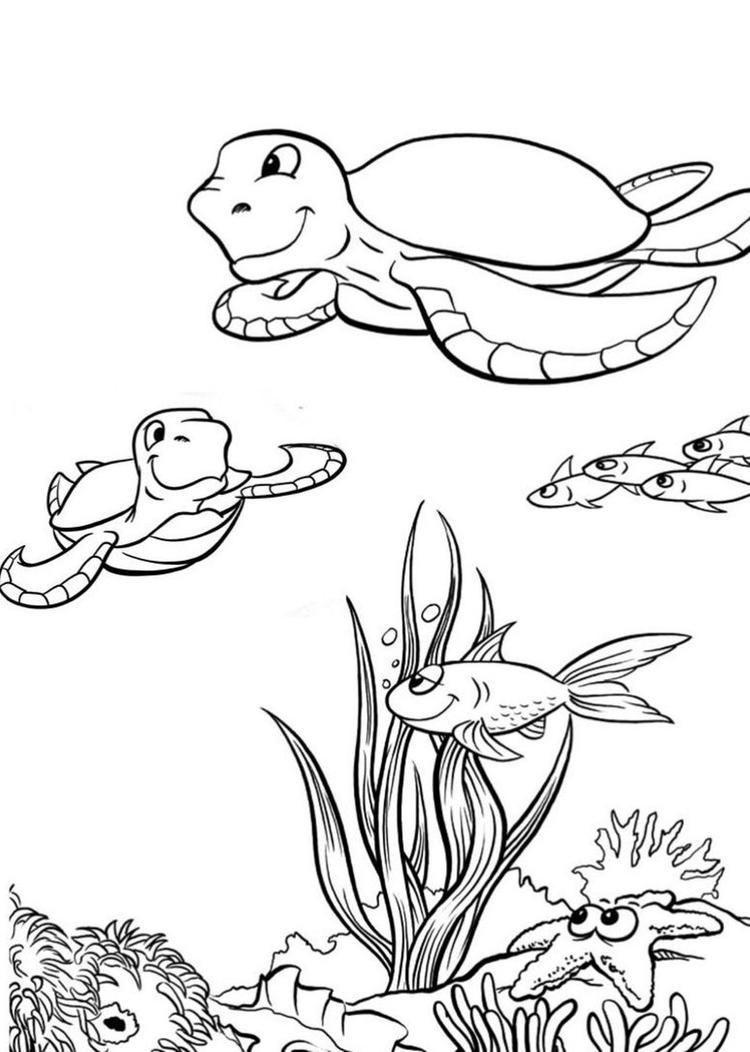 Sea Turtle Coloring Pages Ocean Life