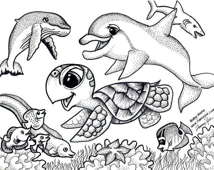 Sea Turtle Coloring Pages Under The Sea
