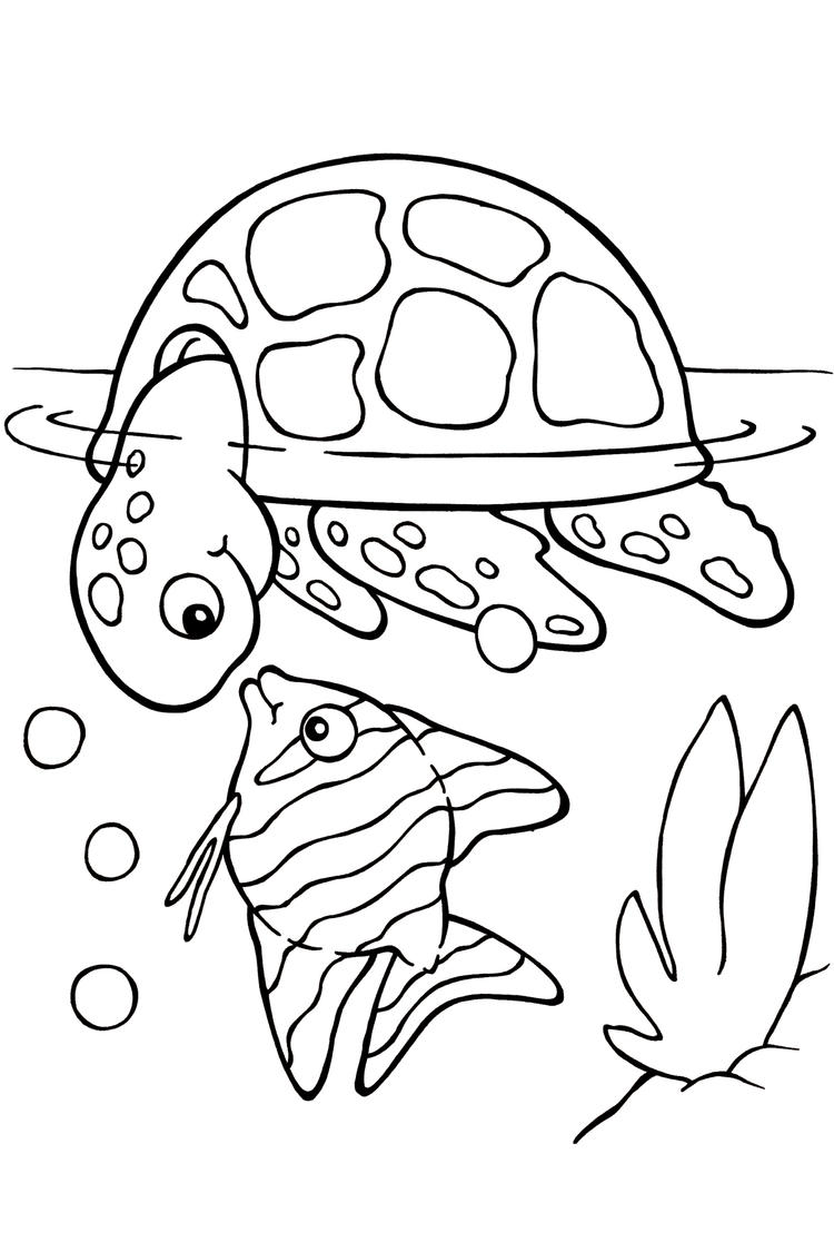Sea Turtle Coloring Pages With Fish 2