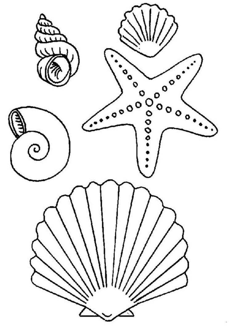 Seashell And Starfish Coloring Pages