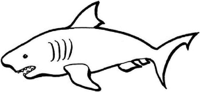 Shark coloring pages easy