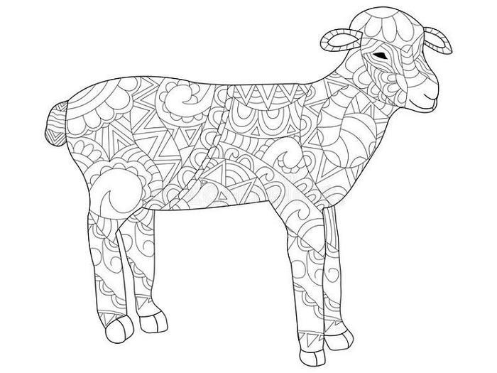 Sheep Coloring Pages For Adults