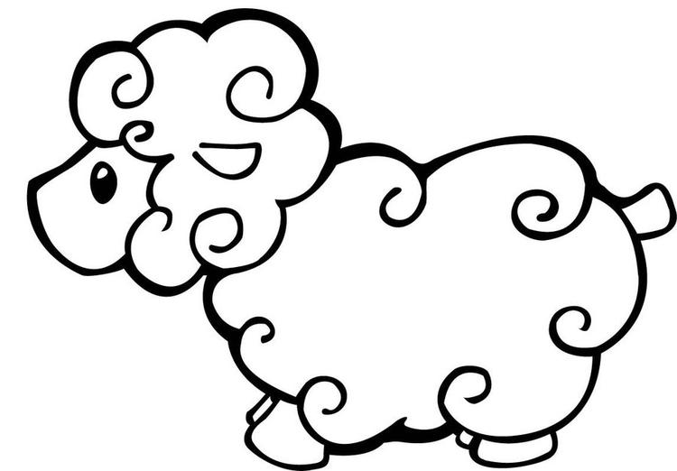 Sheep Coloring Pages For Kids Printable