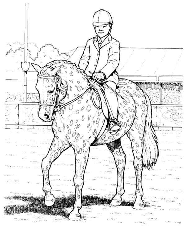 Show Boy And Appalooshorse Coloring Pages
